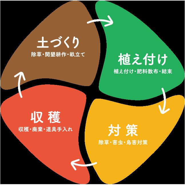 土づくり・植え付け・対策・収穫作業のサイクルの説明図