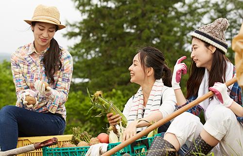 収穫したジャガイモやトウモロコシを持った20代の女性達