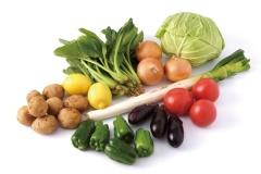 何を育てたい?〜野菜の種類・タイプについて〜